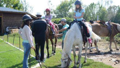 конна база сивек - велинград