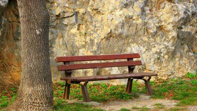 полезни навици за супер добро психическо състояние-4